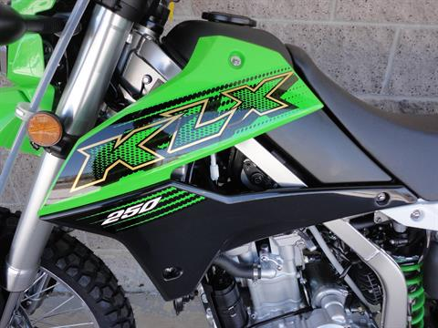 2020 Kawasaki KLX 250 in Denver, Colorado - Photo 3