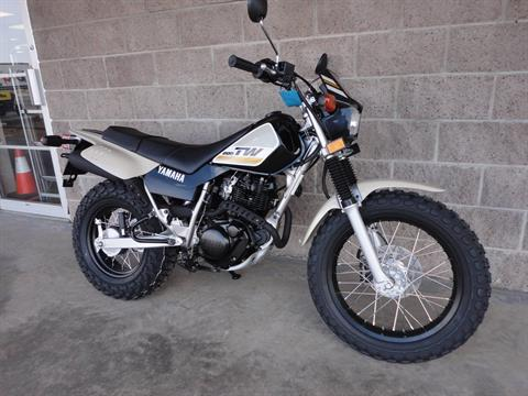 2020 Yamaha TW200 in Denver, Colorado - Photo 12