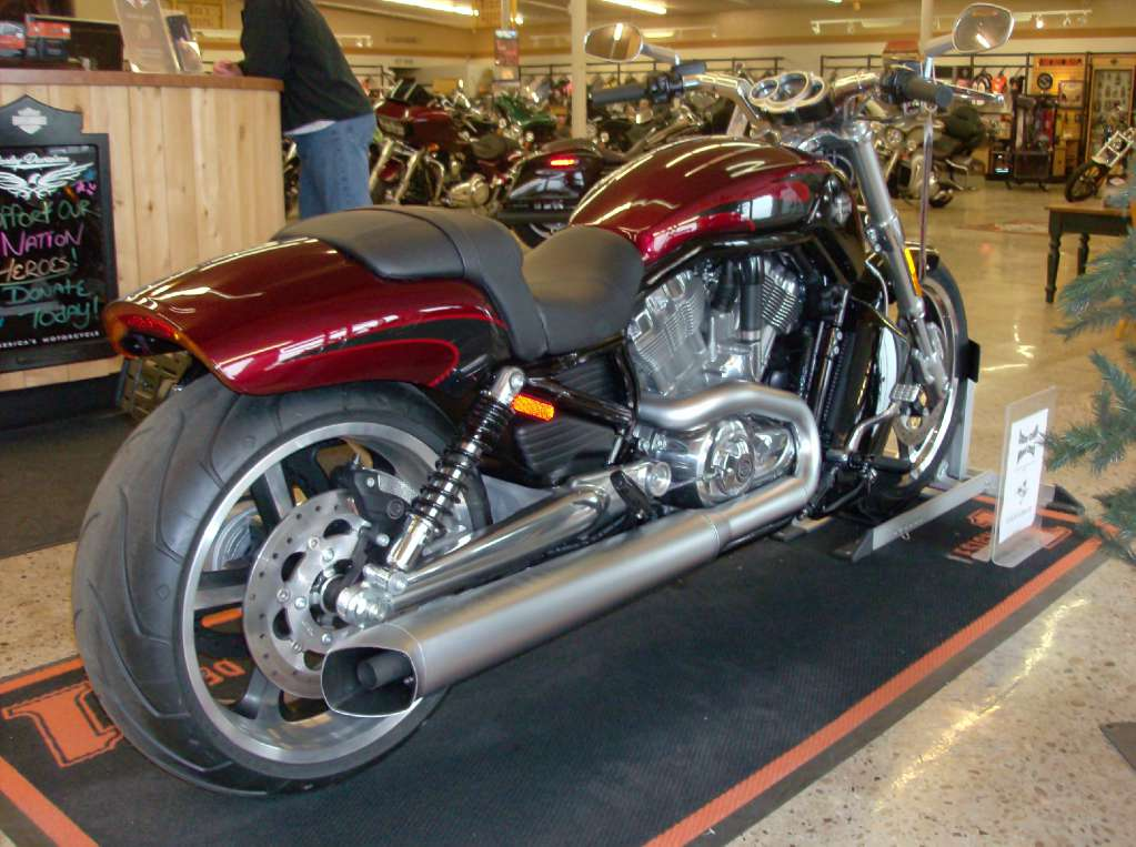 2015 Harley-Davidson V-Rod Muscle® in Green River, Wyoming