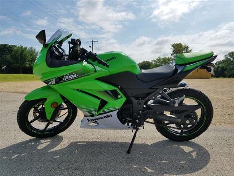 2010 Kawasaki Ninja® 250R in Belvidere, Illinois
