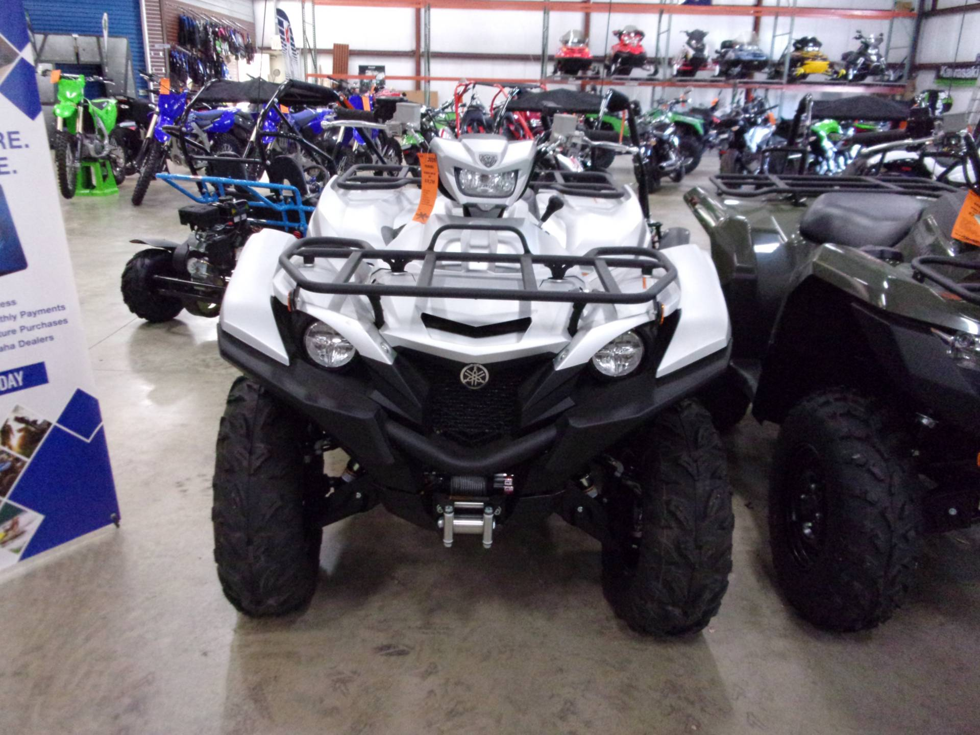 2020 Yamaha Grizzly EPS SE in Belvidere, Illinois - Photo 3
