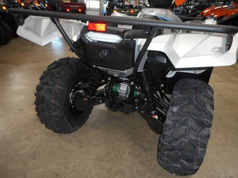 2020 Yamaha Grizzly EPS SE in Belvidere, Illinois - Photo 10