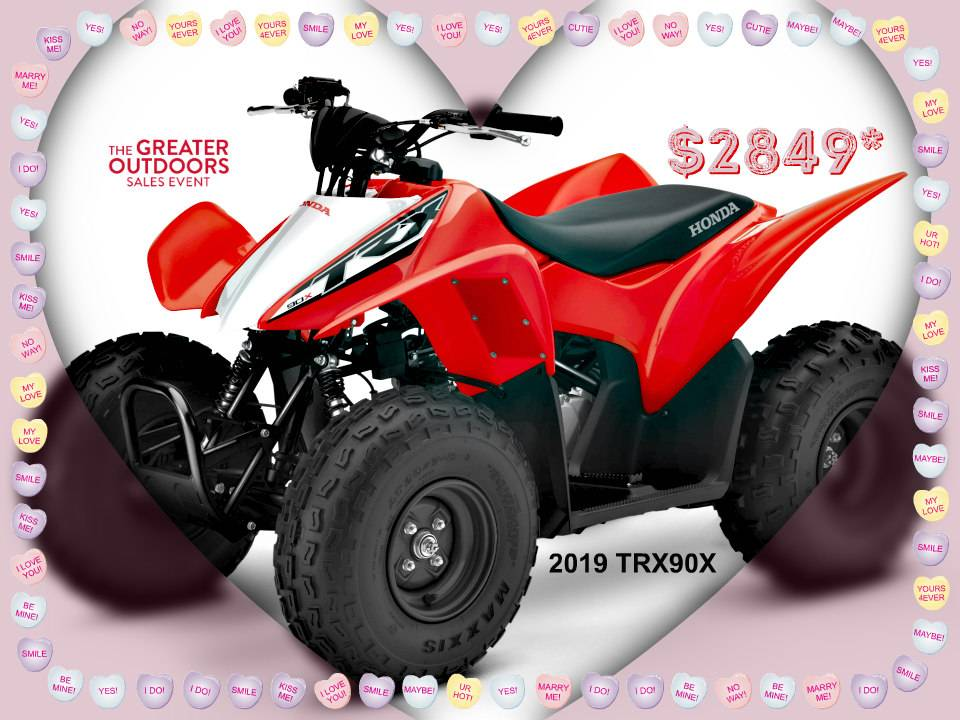 2019 Honda TRX90X in Erie, Pennsylvania - Photo 1