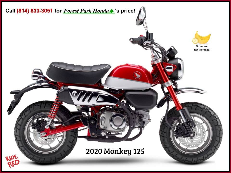 2020 Honda Monkey in Erie, Pennsylvania - Photo 1