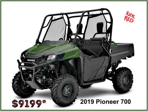 2019 Honda Pioneer 700 in Erie, Pennsylvania