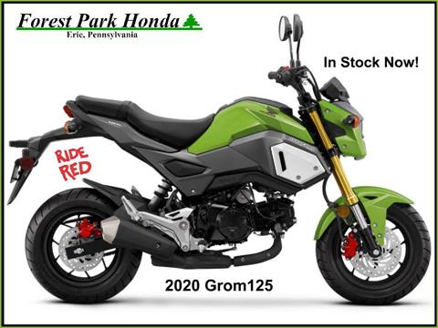 2020 Honda Grom in Erie, Pennsylvania
