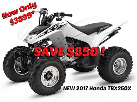 2017 Honda TRX250X in Erie, Pennsylvania