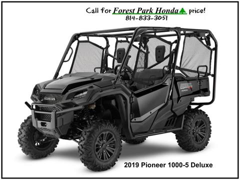 2019 Honda Pioneer 1000-5 Deluxe in Erie, Pennsylvania