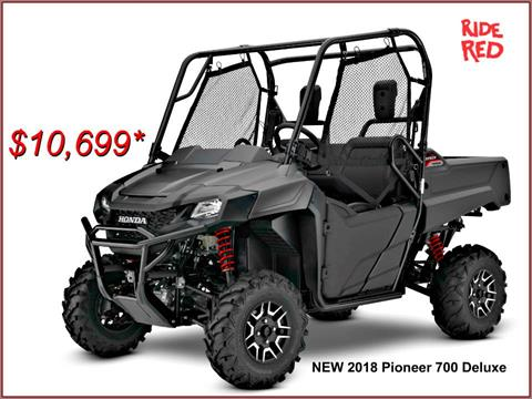 2018 Honda Pioneer 700 Deluxe in Erie, Pennsylvania