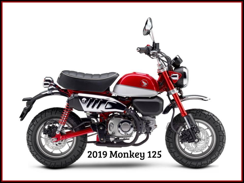 2019 Honda Monkey 1
