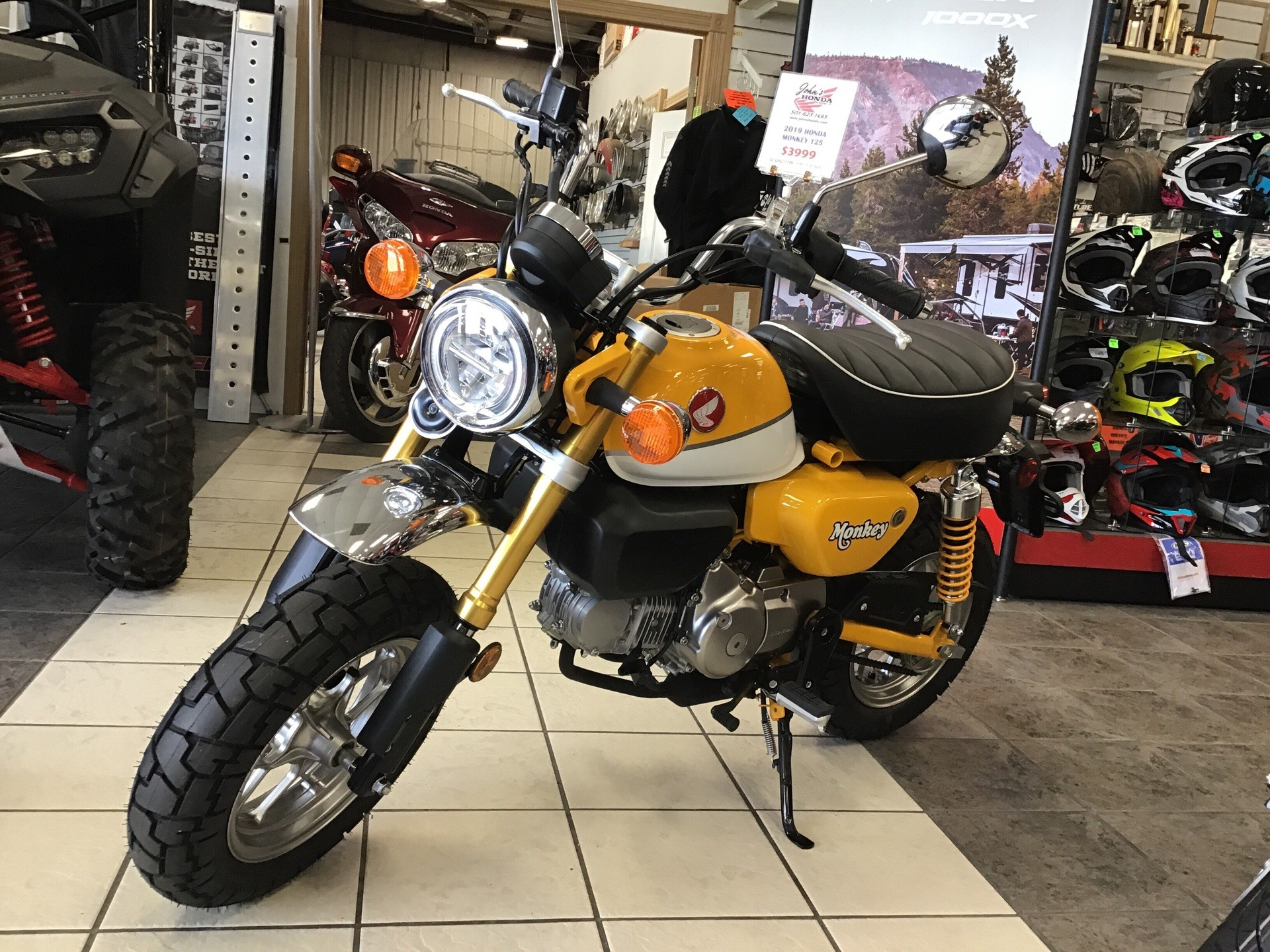 2019 Honda Monkey in Hot Springs National Park, Arkansas - Photo 2