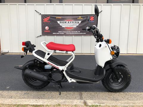 2019 Honda Ruckus in Greenville, North Carolina - Photo 1