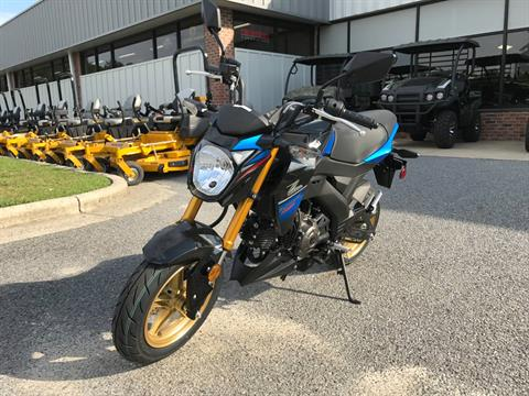 2018 Kawasaki Z125 Pro SE in Greenville, North Carolina