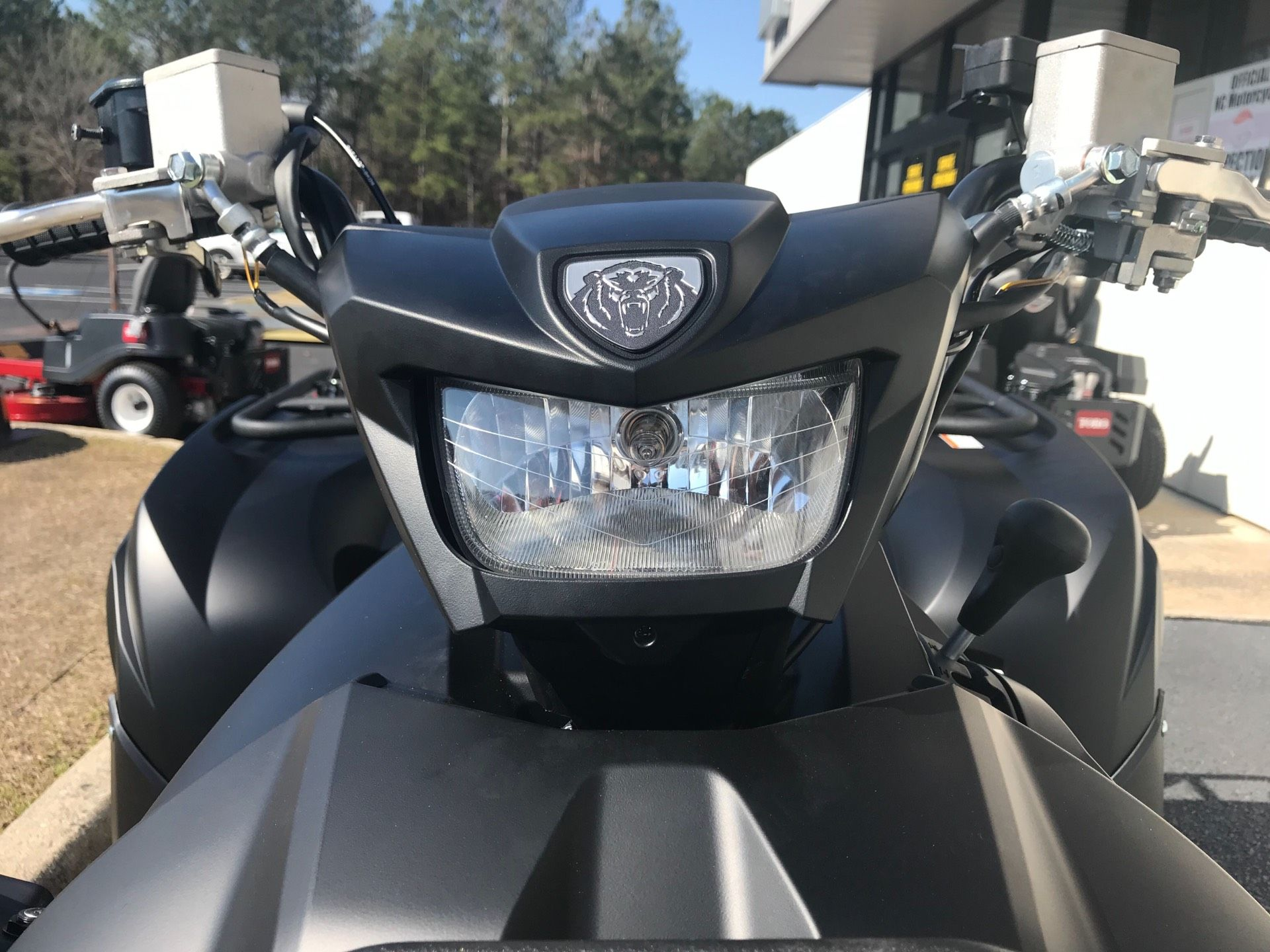 2019 Yamaha Grizzly EPS SE in Greenville, North Carolina - Photo 13