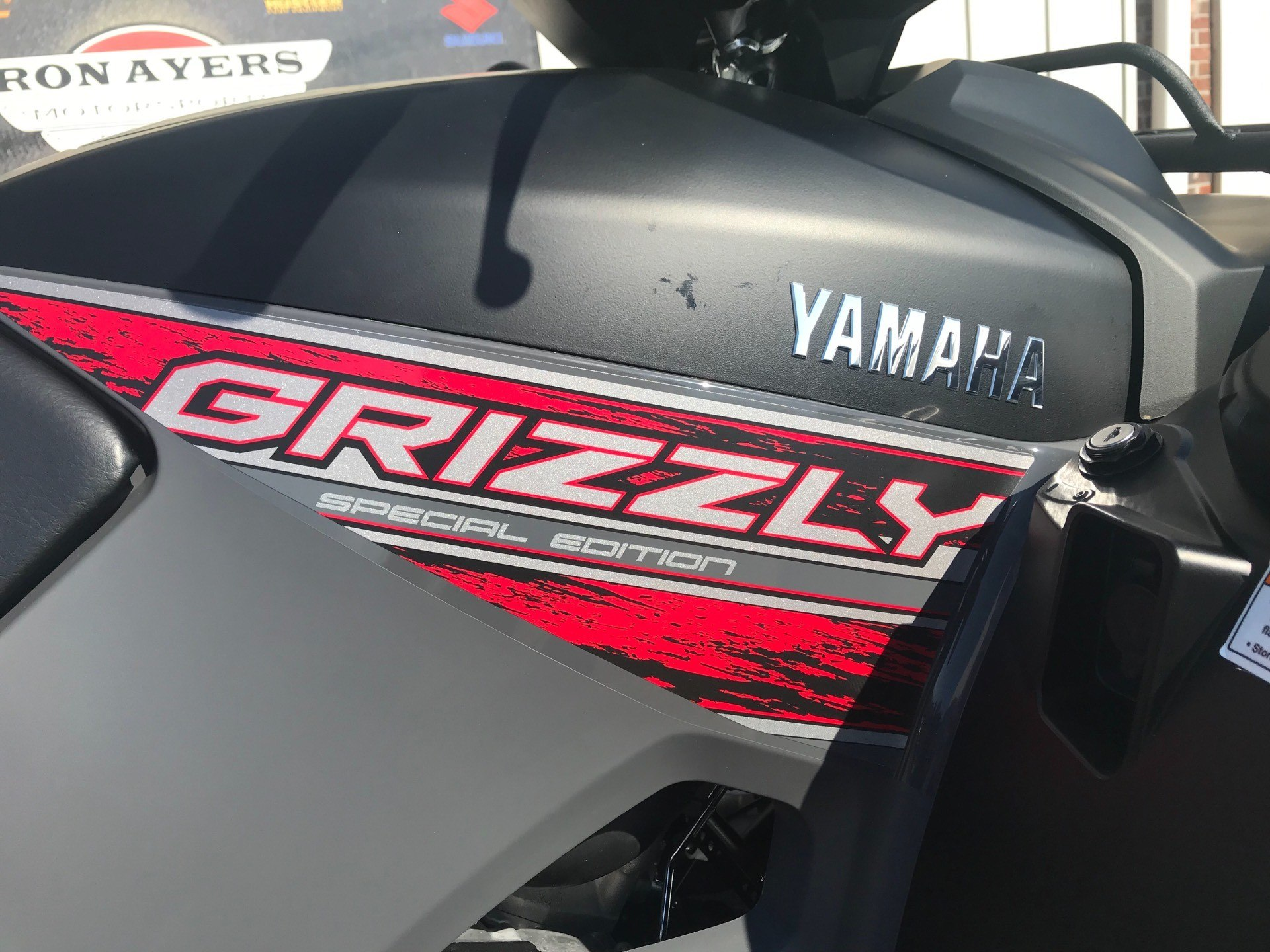 2019 Yamaha Grizzly EPS SE in Greenville, North Carolina - Photo 17