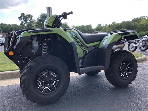 2020 Honda FourTrax Foreman Rubicon 4x4 Automatic DCT EPS Deluxe in Greenville, North Carolina - Photo 6