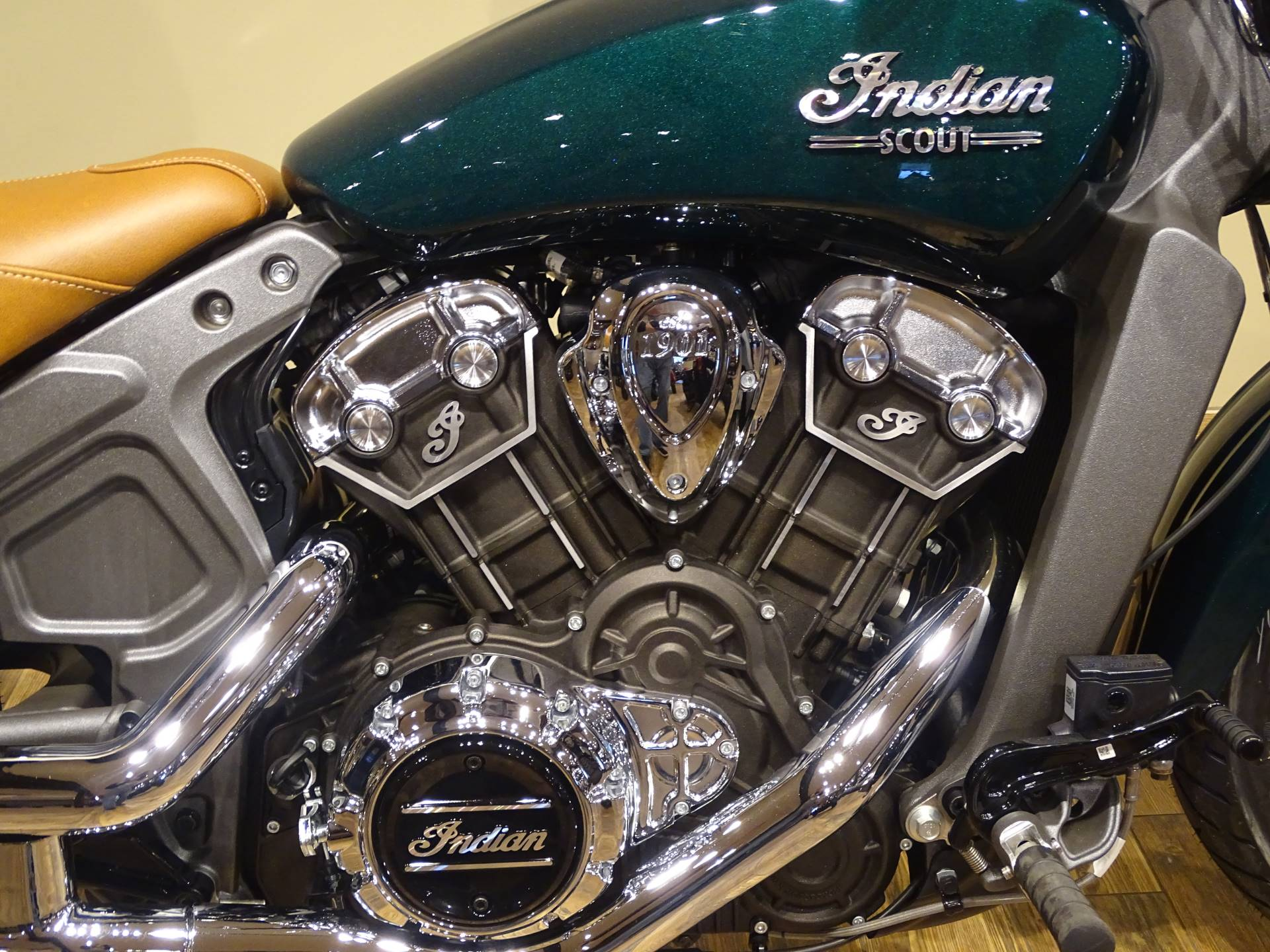 2019 Indian Scout® ABS in Saint Michael, Minnesota