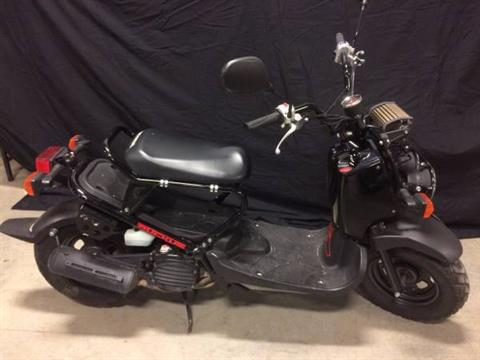 2012 Honda Ruckus® in Louisville, Kentucky