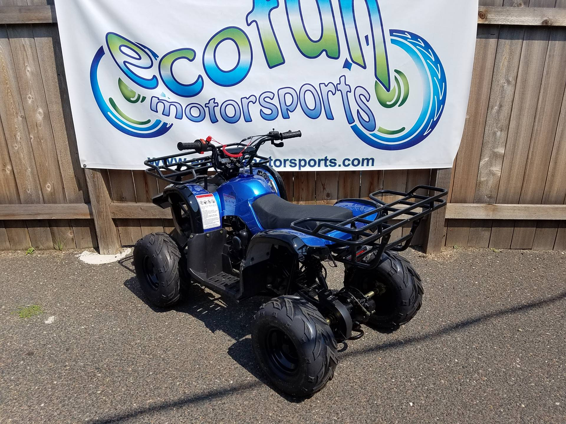 2020 Youth Trooper 125cc ATV in Forest Lake, Minnesota - Photo 8