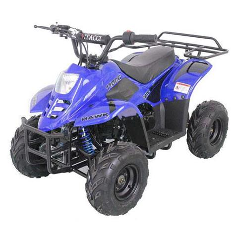 2020 Youth Scout 110cc ATV in Forest Lake, Minnesota