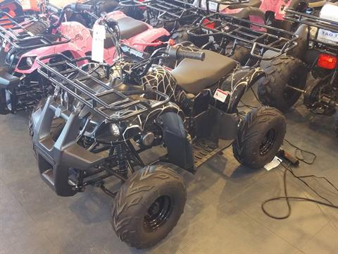 2020 Youth Trooper 125cc ATV in Forest Lake, Minnesota - Photo 1