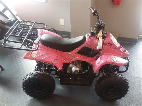 2020 Youth Scout 110cc ATV in Forest Lake, Minnesota - Photo 1