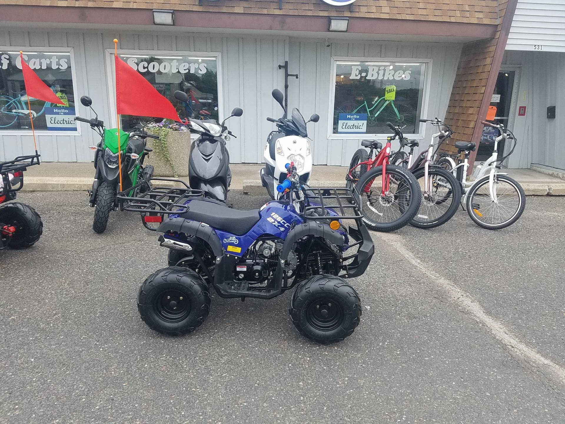 2020 Raytech Trooper 125 ATV in Forest Lake, Minnesota - Photo 3