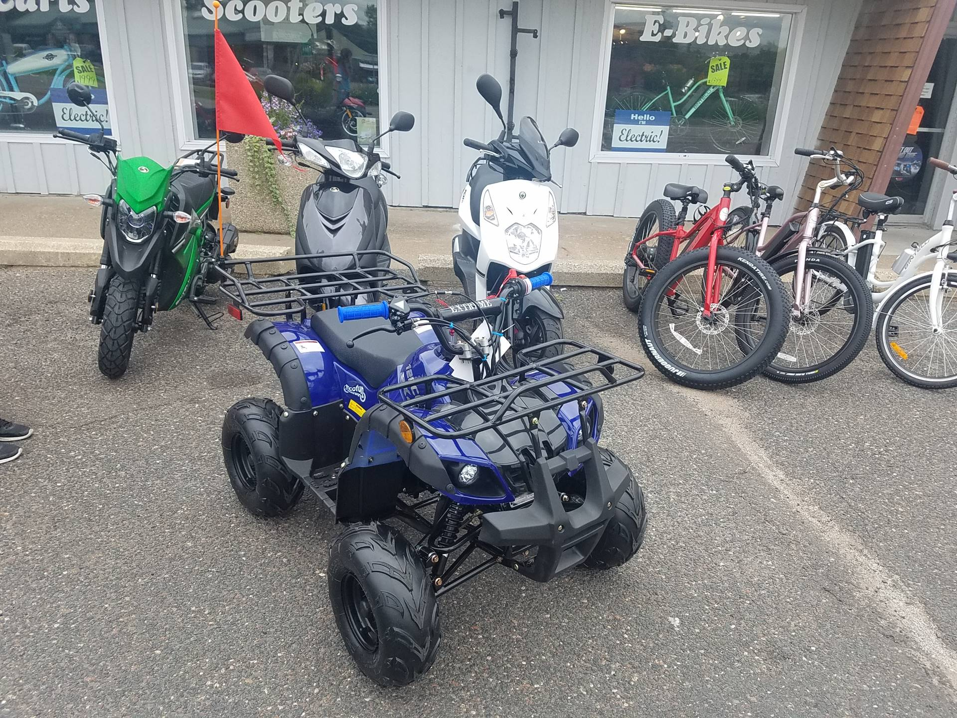 2020 Raytech Trooper 125 ATV in Forest Lake, Minnesota - Photo 6