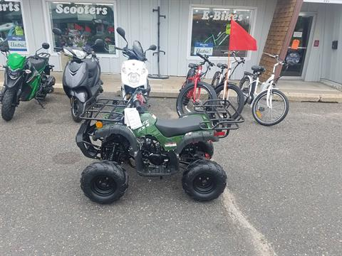 2020 Raytech Trooper 125 ATV in Forest Lake, Minnesota - Photo 2