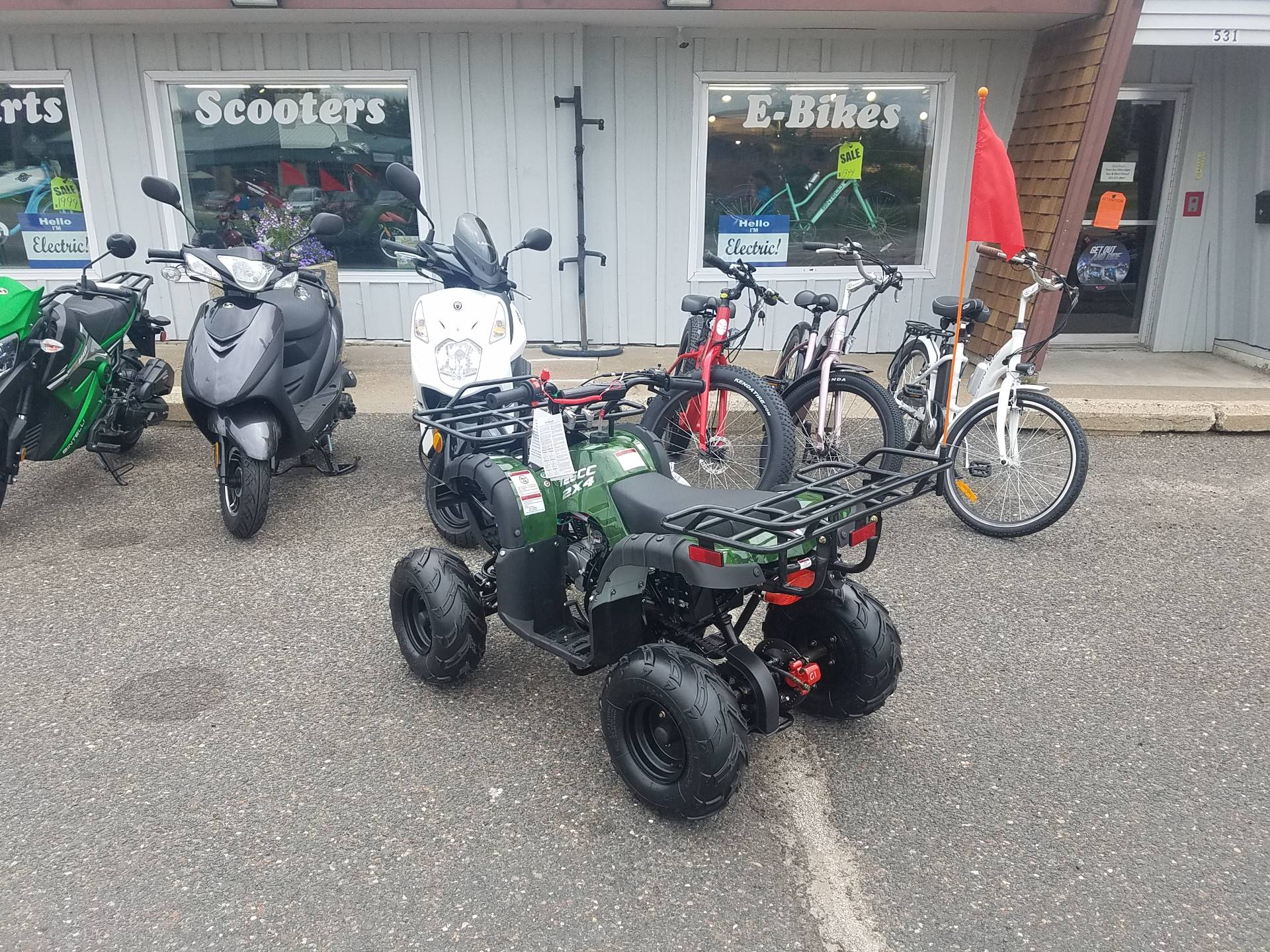 2020 Raytech Trooper 125 ATV in Forest Lake, Minnesota - Photo 8