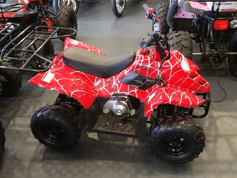 2020 Youth Scout 110cc ATV in Forest Lake, Minnesota - Photo 2