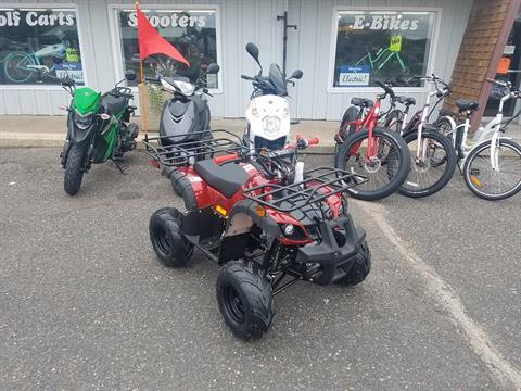 2020 Raytech Trooper 125 ATV in Forest Lake, Minnesota - Photo 1
