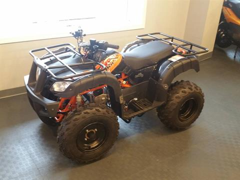 2019 Kayo USA Bull 150 ATV in Forest Lake, Minnesota - Photo 2