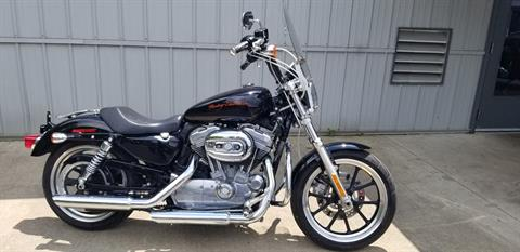 2011 Harley-Davidson Sportster® 883 SuperLow™ in Athens, Ohio