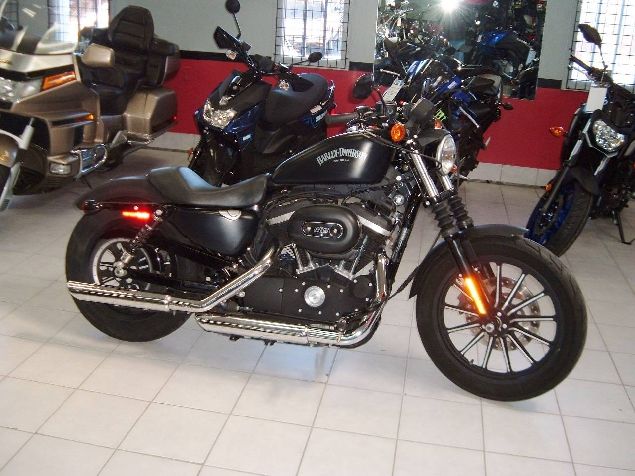 2015 Harley-Davidson Iron 883™ in New Haven, Connecticut