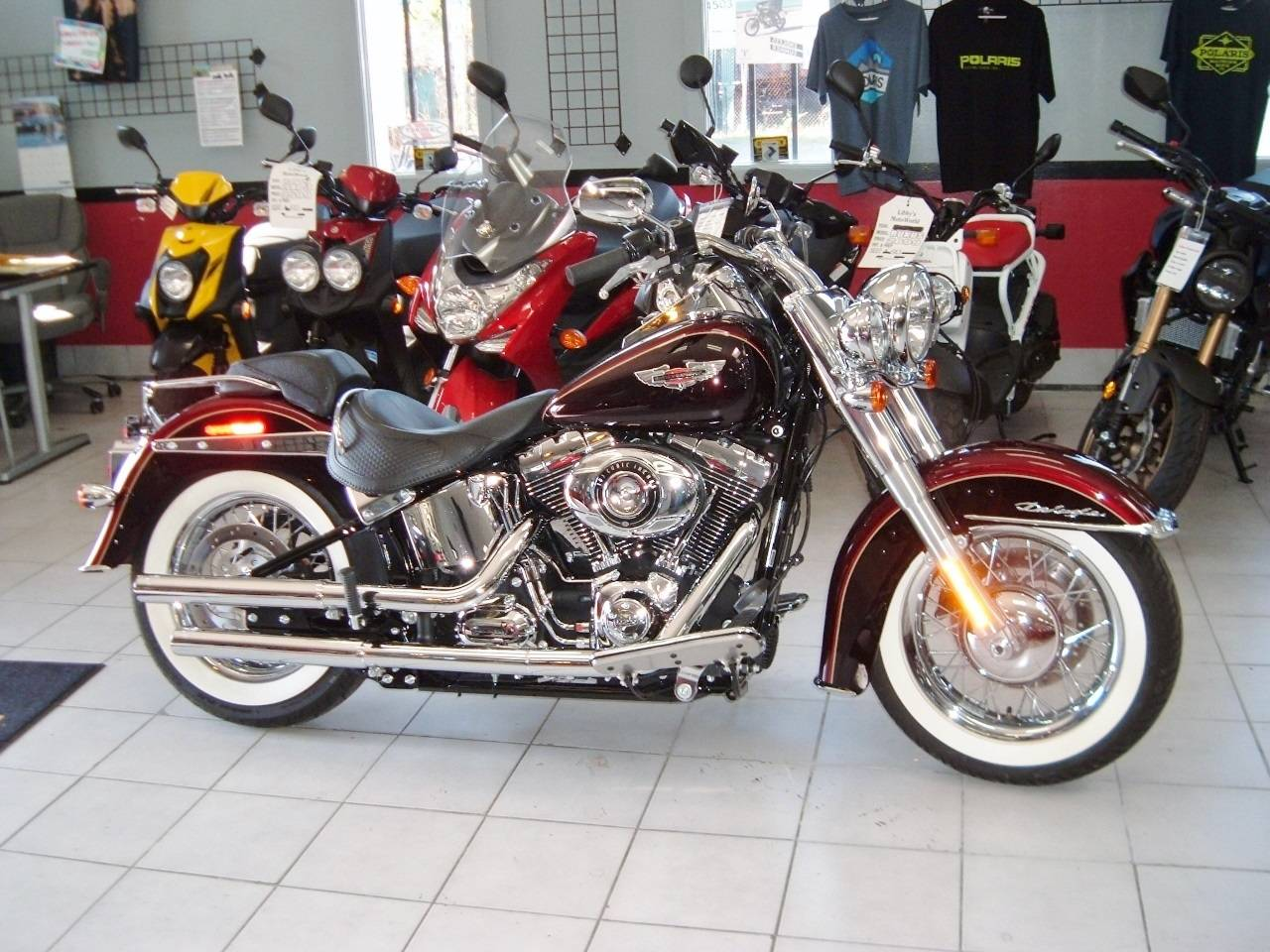 2014 Harley-Davidson Softail® Deluxe in New Haven, Connecticut