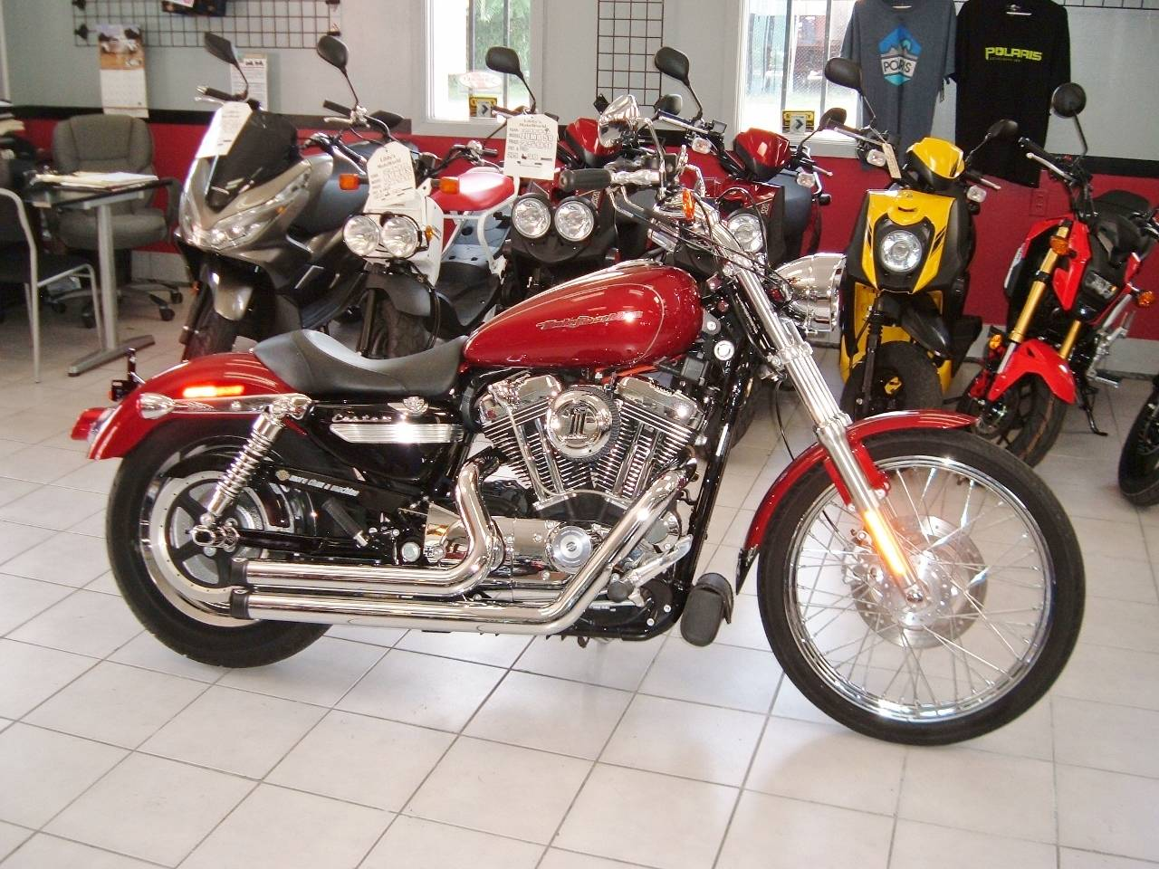 2006 Harley-Davidson Sportster® 1200 Custom in New Haven, Connecticut