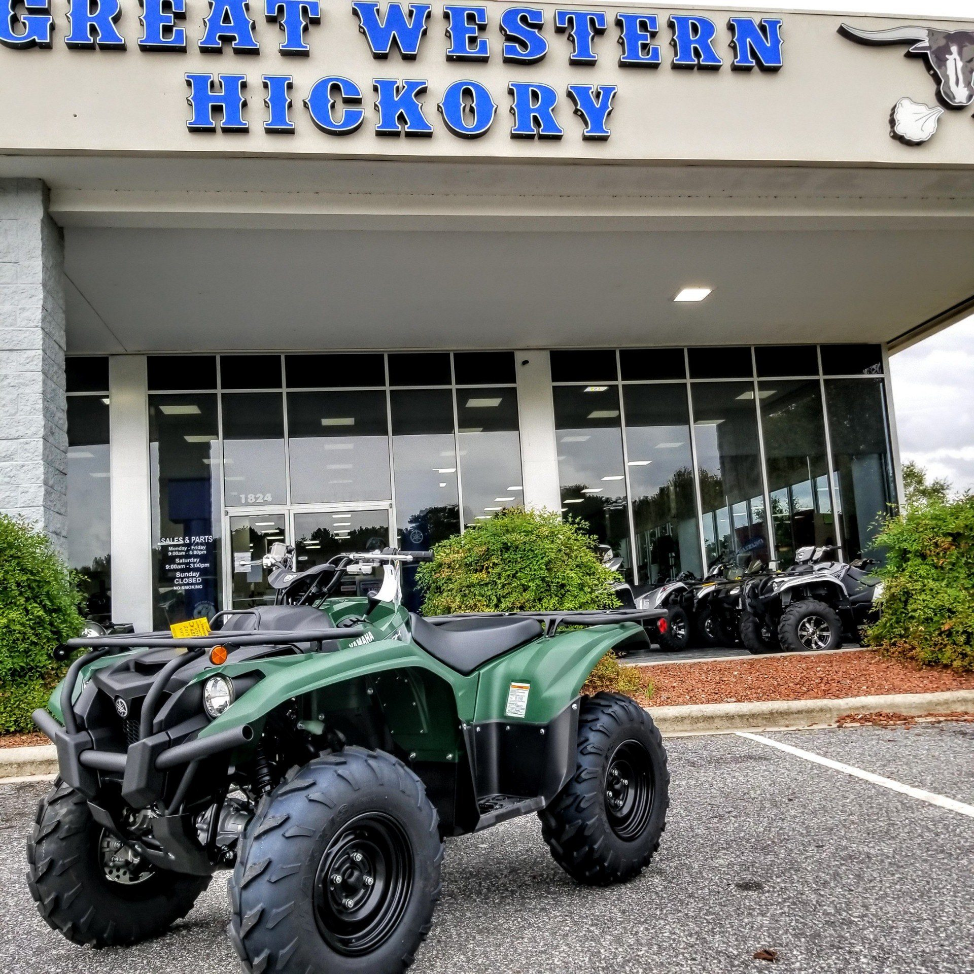 2019 Yamaha Kodiak 700 in Hickory, North Carolina - Photo 1