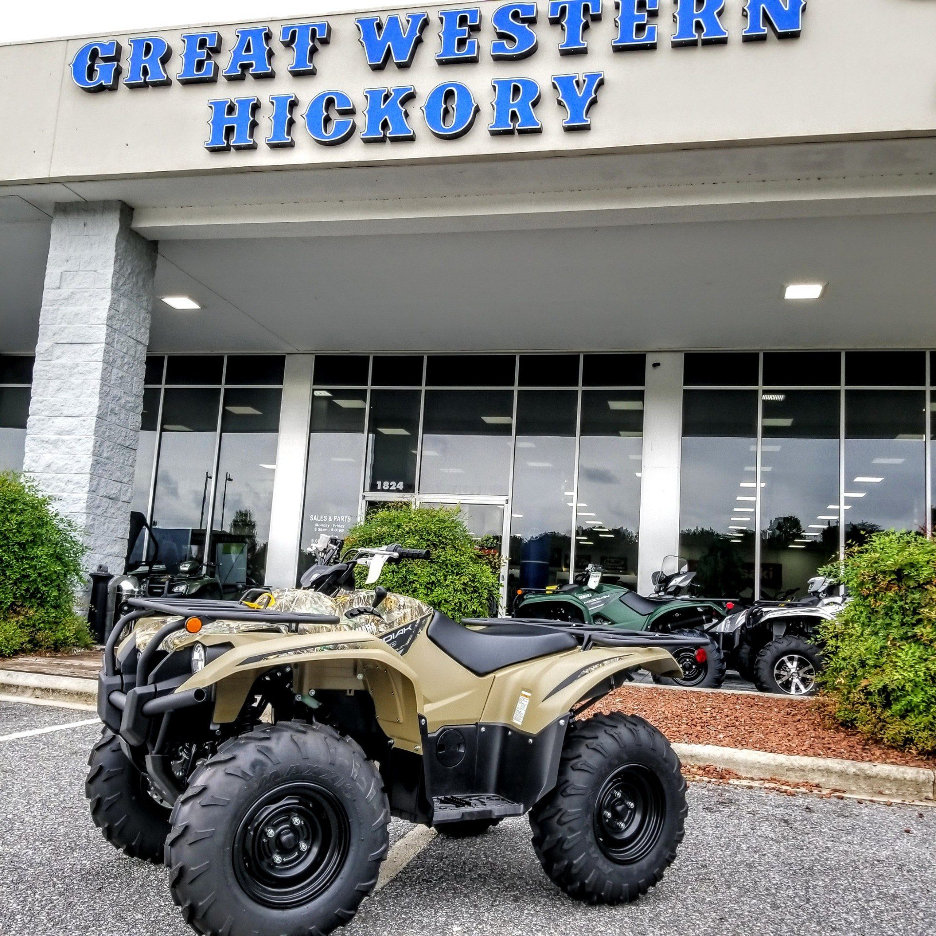 2019 Yamaha Kodiak 700 in Hickory, North Carolina