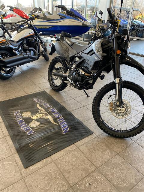 2020 Kawasaki KLX 250 in Hickory, North Carolina - Photo 6