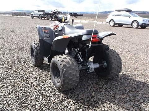2018 Polaris Phoenix 200 in Cottonwood, Idaho - Photo 3