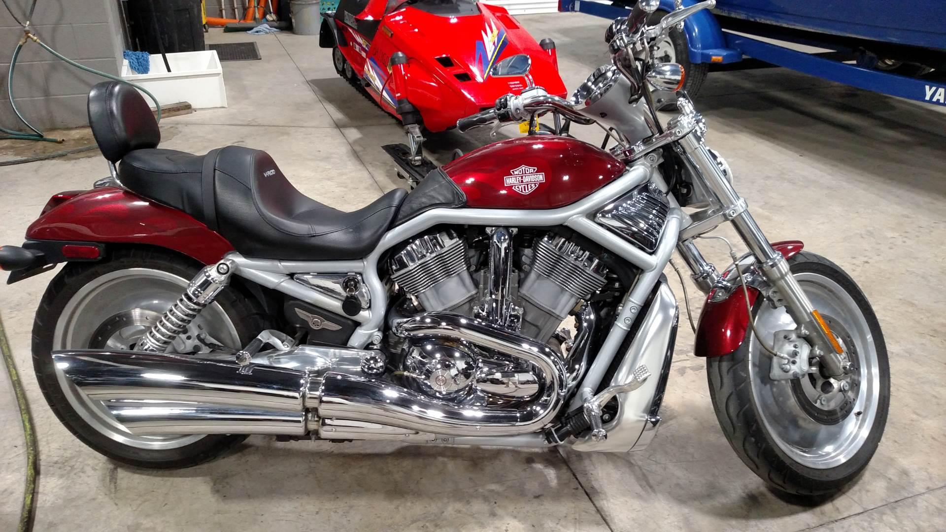 2003 VRSCA  V-Rod