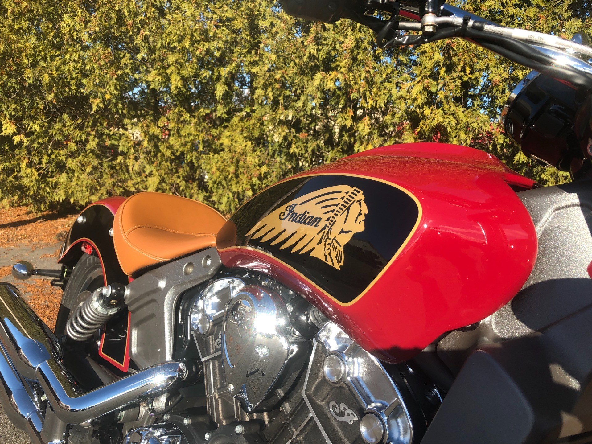 2019 Indian Scout® ABS in Westfield, Massachusetts