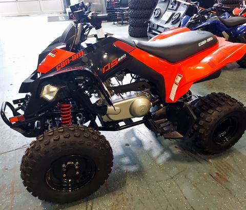 2021 Can-Am DS 250 in Waco, Texas - Photo 2