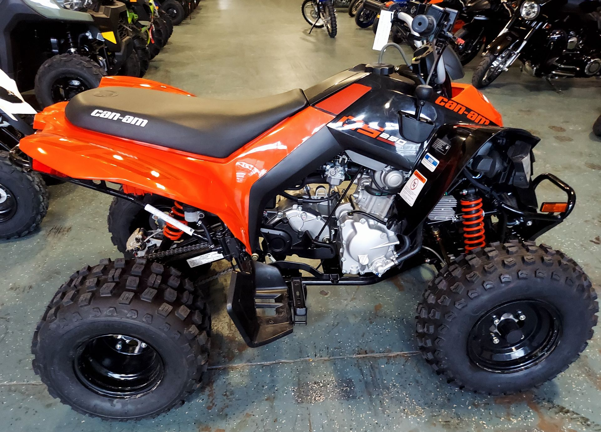 2021 Can-Am DS 250 in Waco, Texas - Photo 3