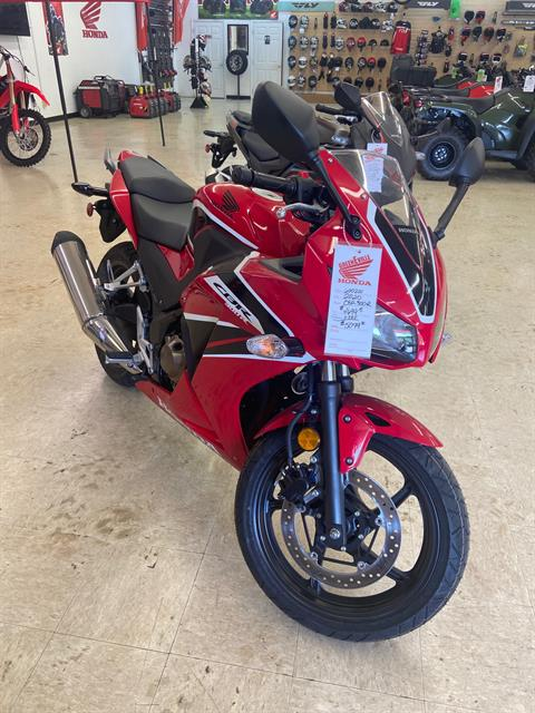 2020 Honda CBR300R in Greeneville, Tennessee - Photo 1
