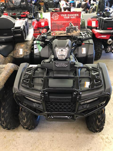 2019 Honda FourTrax Foreman Rubicon 4x4 Automatic DCT EPS Deluxe in Greeneville, Tennessee - Photo 2