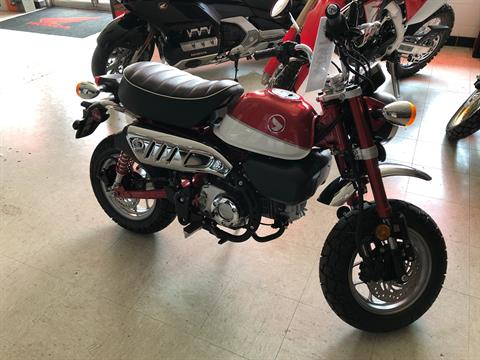 2019 Honda Monkey in Greeneville, Tennessee - Photo 1