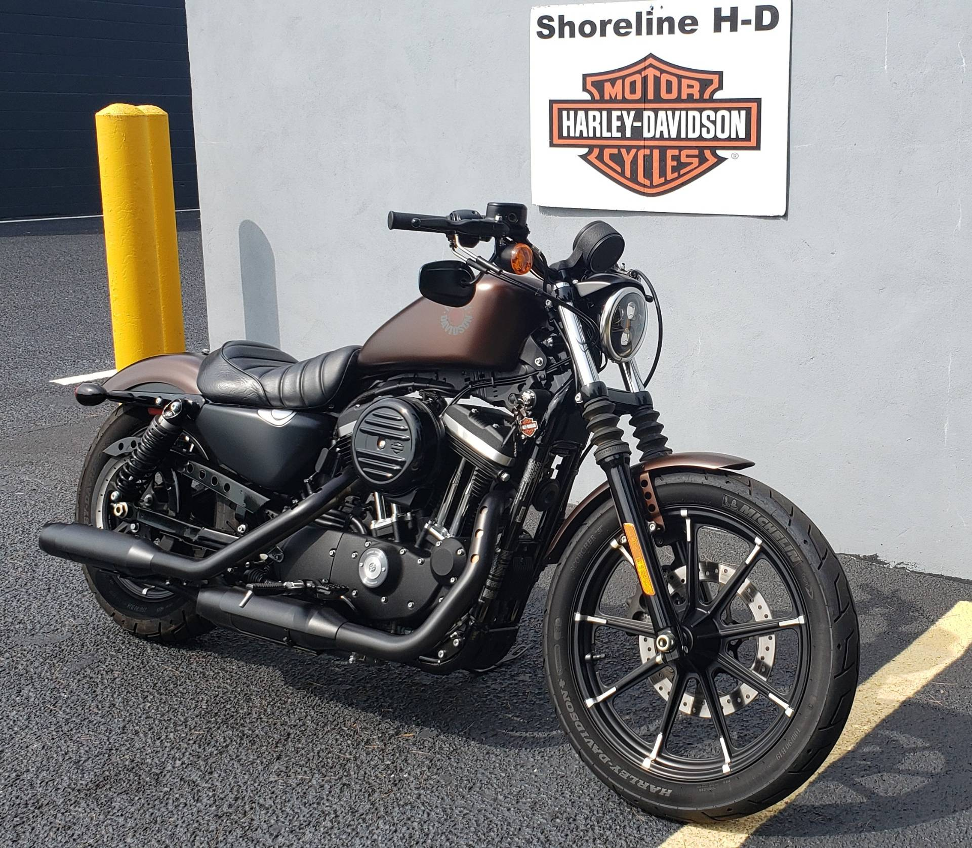 2019 Harley-Davidson Iron 883 in West Long Branch, New Jersey - Photo 3