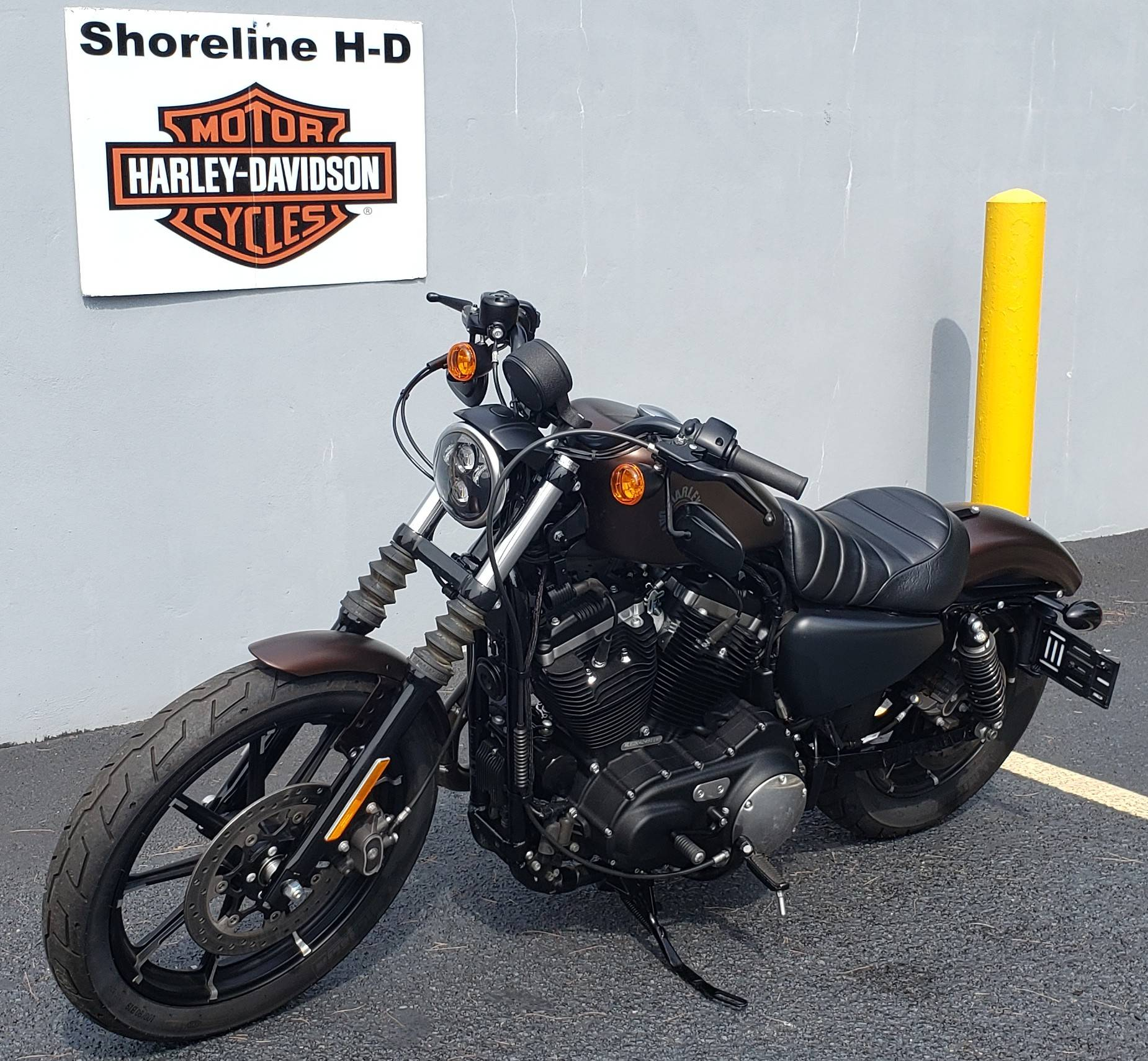 2019 Harley-Davidson Iron 883 in West Long Branch, New Jersey - Photo 7